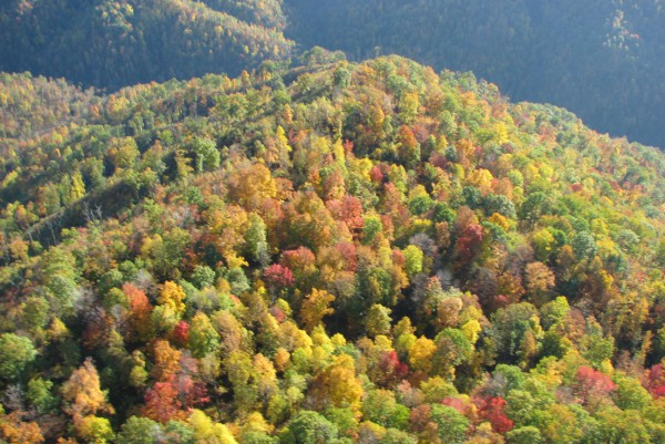 Lovely West Virginia Mountains in early autumn