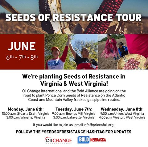 seeds-of-resistance