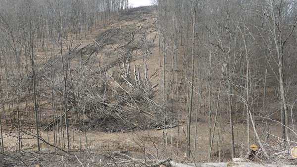 Lewis County, WV on March 25, 2015: Clearing underway for the 36-inch-diameter Stonewall Gas Gathering LLC pipeline. Stonewall is a subsidiary of Momentum, which has offices in Durango and Huston. The proposed Atlantic Coast Pipeline would be 42-inches in diameter and traverse much steeper terrain.
