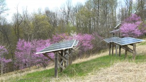 Renewable energy is sprouting up all over WV. A little leadership could accelerate our state's transition to the new energy future. Photo by V. Stockman.