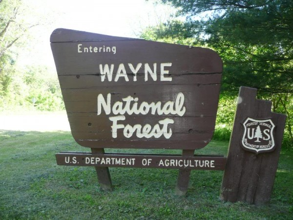 wayne-national-forest