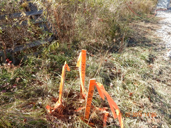These three stakes are identifying a control point which is outside the limits of disturbance (LoD). These markings surround a pin to be used for reference.