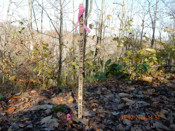 With precise location markings, stakes like this will usually have a steel pin also associated with them. This stake gives the latitude, longitude and elevation of the site.