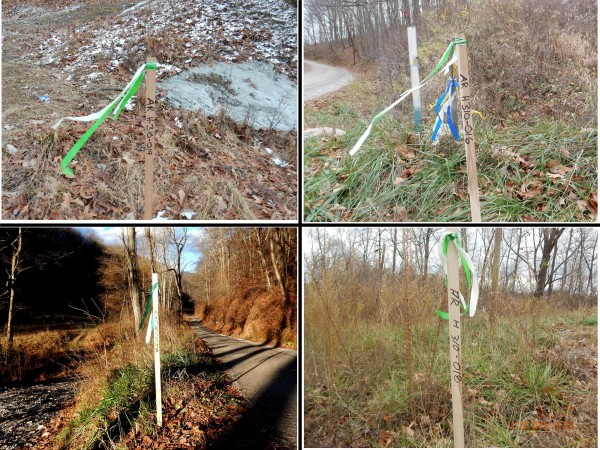 """Stakes with simple flags and some basic identification. These stakes shown here all indicate an access route to be used for equipment and trucks to get to a proposed pipeline right-of-way. The """"H310"""" is the EQT name for the proposed 30-inch diameter OVC pipeline."""