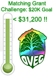 matching grant challenge goal thermometer