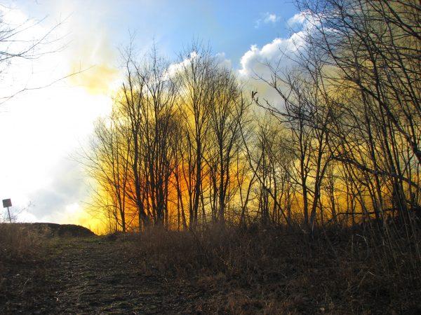 Yellow smoke from a blast on Kayford Mountain. Photo by Vivian Stockman.