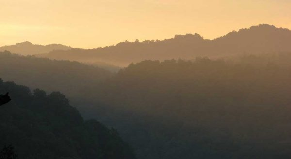 WV's mountains celebrated on International Mountain Day. Photo by Vivian Stockman/OVEC
