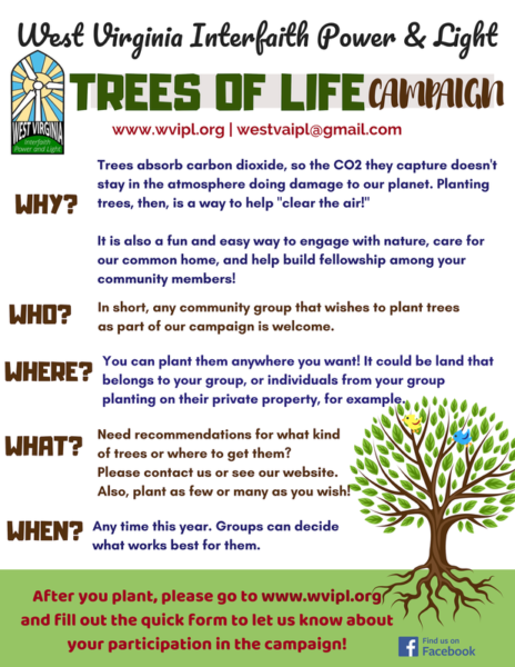 Good Advice Just Plant Trees