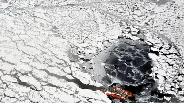 NOAA-arctic